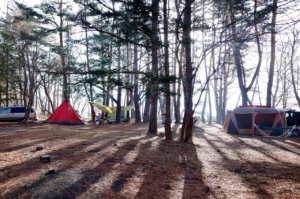 Feldbett fürs Festival